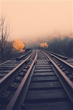Railway, dawn, fog, trees, fall iPhone wallpaper