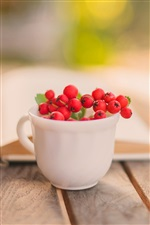 Still life, book, cup, red berry iPhone wallpaper