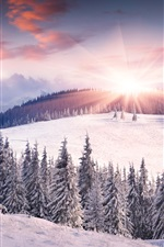 Dawn, winter, snow, sun, mountains, trees iPhone wallpaper