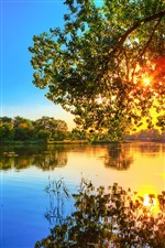 Spring sunset, lake water reflection, trees, sunlight, blue sky iPhone wallpaper