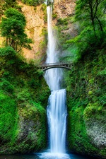 Oregon, USA, waterfall, bridge iPhone wallpaper