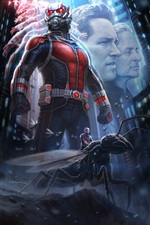 2015 Ant-Man iPhone Wallpaper