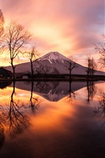 Japan, island Honshu, Fuji mount, evening, trees iPhone wallpaper