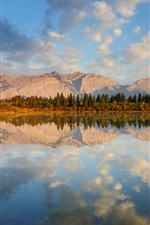 Mountains, forest, lake, water reflection iPhone wallpaper