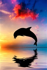 Dolphin jump, silhouette, ocean, water reflection, sunset iPhone wallpaper