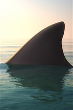Shark, fin, ocean iPhone wallpaper