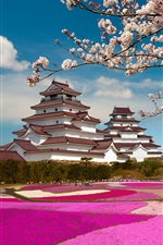 Aizuwakamatsu Castle, Fukushima, Japan, Mount Fuji, Sakura bloom iPhone wallpaper