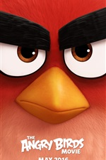 Angry Birds movie iPhone Wallpaper