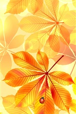 Autumn, yellow leaves, insect, ladybug iPhone wallpaper