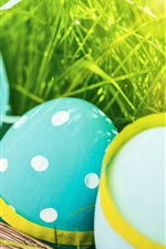 Blue Easter eggs, spring, grass iPhone wallpaper