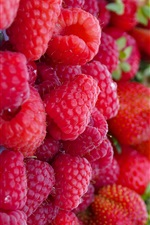 Red berries, raspberries, fruit iPhone wallpaper
