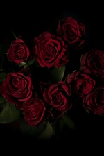 Red roses, bouquet, darkness iPhone wallpaper