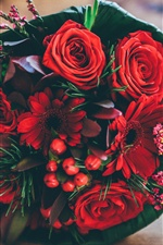 Red flowers, rose, chamomile iPhone wallpaper