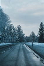 Winter, road, trees, snow, dusk iPhone Wallpaper