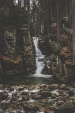 Waterfall, rocks, trees iPhone wallpaper