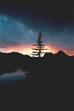 Night, tree, river, mountains, sunset iPhone wallpaper
