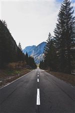 Road, trees, mountains iPhone wallpaper