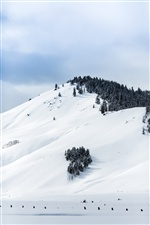 Winter, white snow, mountain iPhone wallpaper
