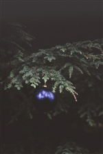 Fir twigs, blue Christmas ball iPhone wallpaper
