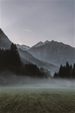 Mountains, meadow, fog, morning iPhone Wallpaper