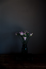 Pink flowers, vase, darkness iPhone wallpaper
