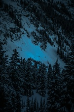 Winter, snow, trees, slope, night iPhone Wallpaper